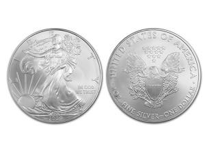 2009美國鷹揚銀幣1盎司